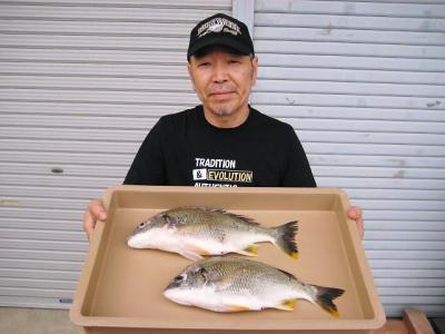 20100613wakino.jpg