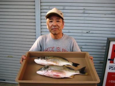 20100723wakino.jpg