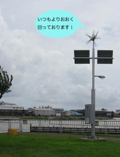 IMG_0974-1.jpg