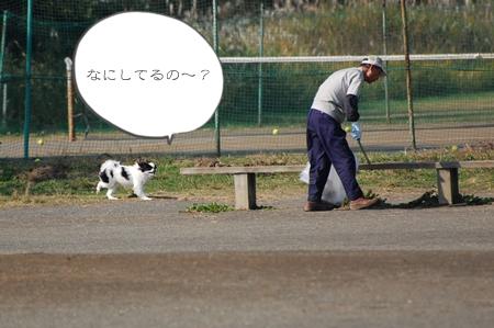 tDSC_4987.jpg