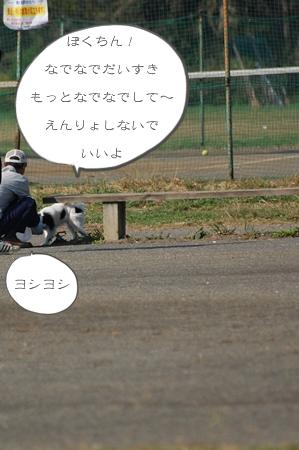 tDSC_4988.jpg