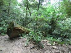 瞑想の小道3