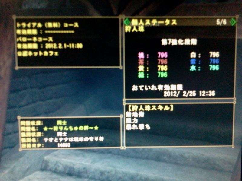 2012-01-26 13.30.13