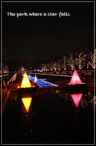 irumi-2010-6.jpg