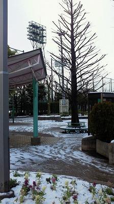 moblog_a46d70e9_20110303002641.jpg