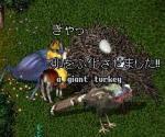 収穫祭02