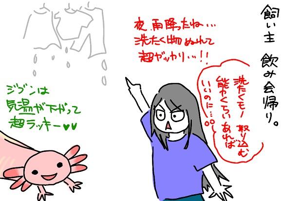 20110608sentaku_fc2.jpg