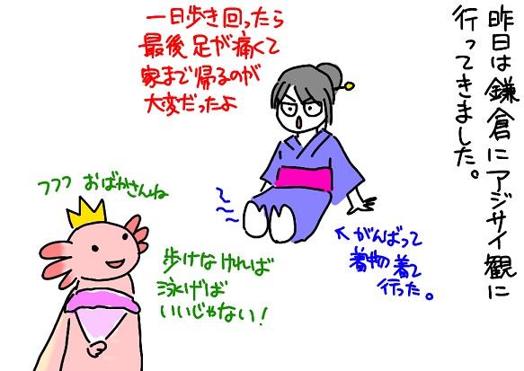 20110619kamakura_fc2.jpg