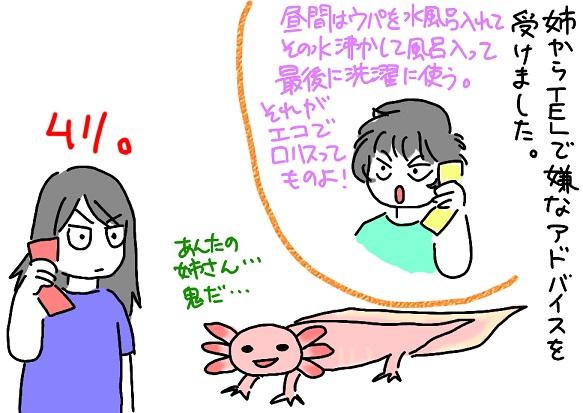 20110629ane_fc2.jpg