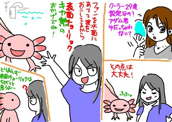 20110712fan_fc2.jpg