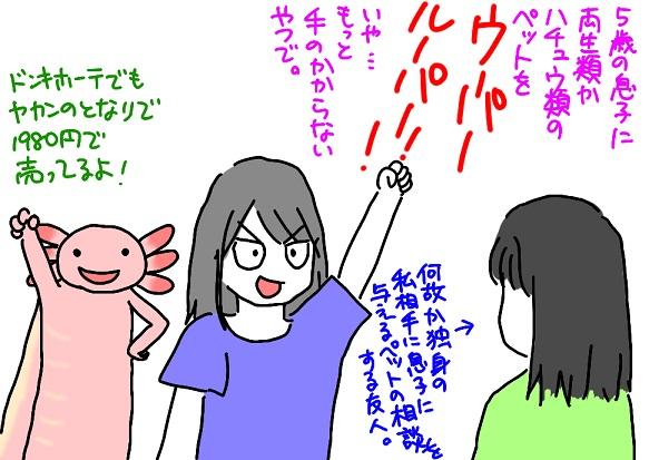 20110713pet_fc2.jpg
