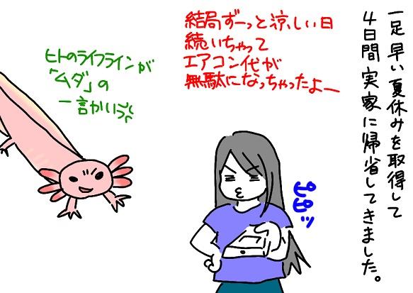 20110724kisei_fc2.jpg