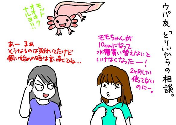 20110902ウパ友の相談_fc2