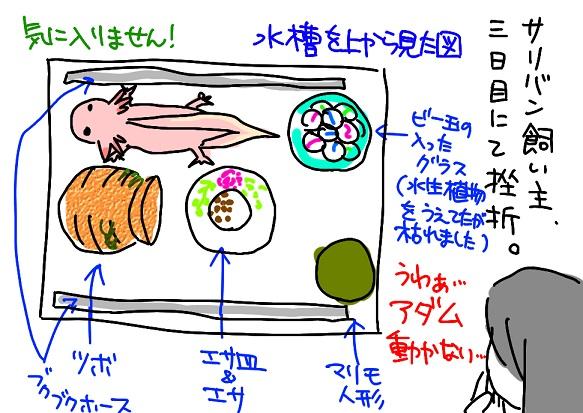 20110908サリバン先生断念_fc2