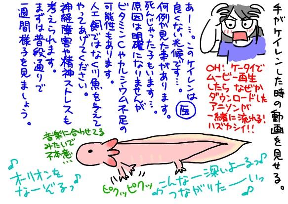 20110911動物病院4_fc2