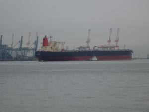 20101010_03.jpg