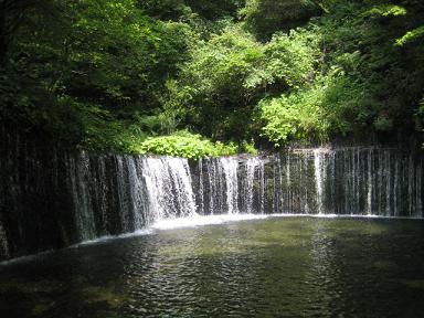 うなぎ撮影「名勝白糸の滝」図