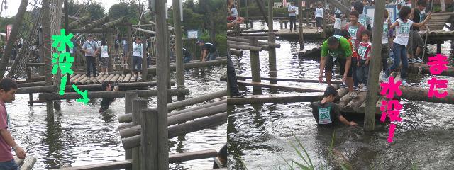池にハマる人たち・・・