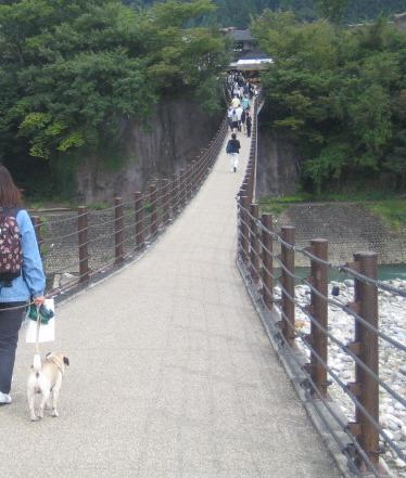 橋を渡ってく、結構高くて怖かった・・・