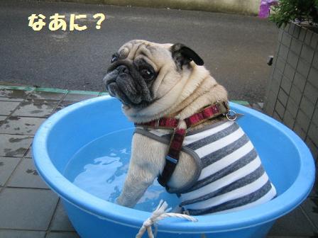行水中・・・