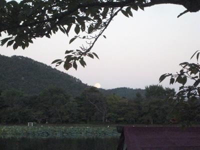 kangethu_091005_3.jpg
