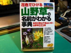 成美堂出版「わかる事典」、『山野草の名前がわかる事典』、