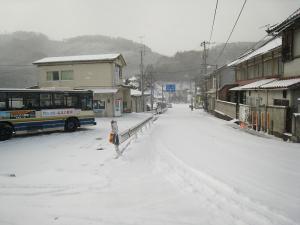 2010.1.14.「雪」、大寒波、4