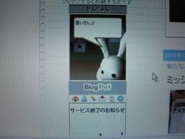 ブログペット・名前