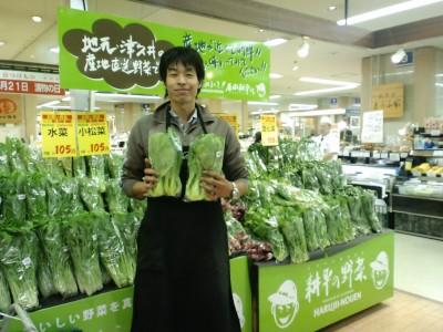 tsukuicorner_02