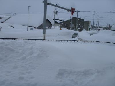 2012年1月15日大雪の庭 積雪1.8m