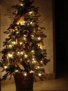 navidad2009.jpg