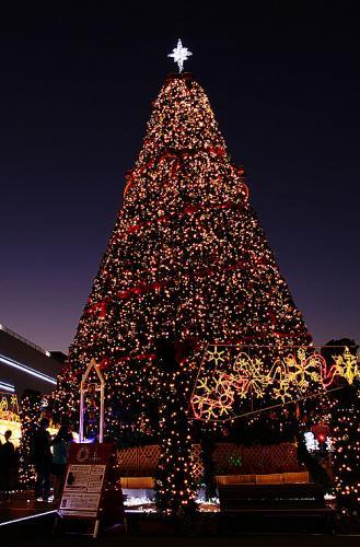 ららぽーとクリスマスツリー