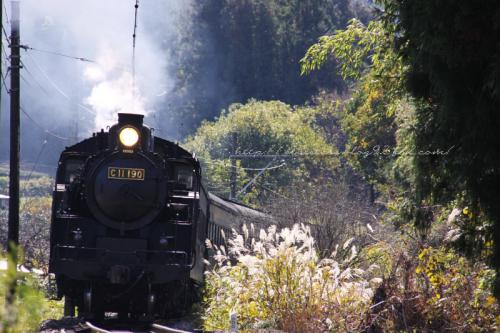 蒸気機関車190