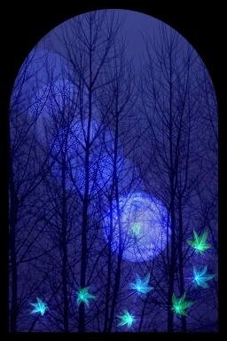 夜の風景01