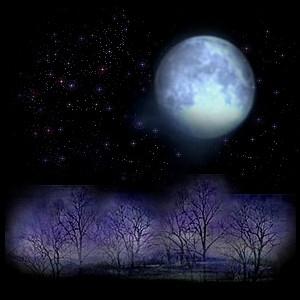 夜の風景03