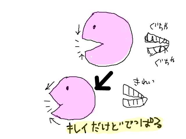 snap_wakawaka2_201023271.jpg