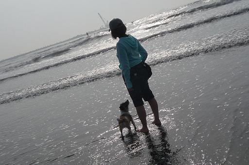 2010.5.5海辺で-4 モカ、あれがサーフィンだよ
