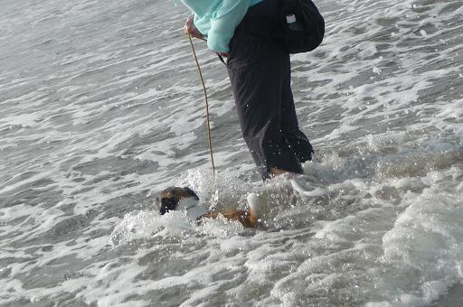 2010.5.5不意の大波