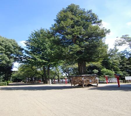 washimiya jinjya 20090907 08_R