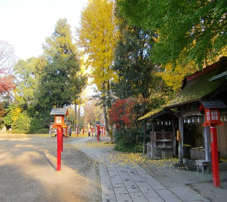washimiya jinjya 20091126 05_R