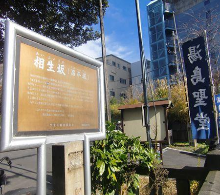 aioi saka shohei saka yushima seidou 20091212_R