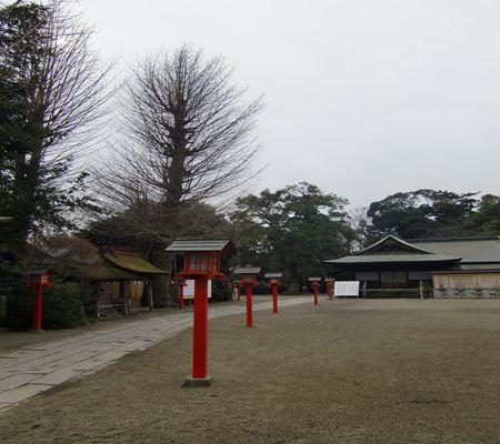 washimiya jinjya 2010217 saitama 02_R