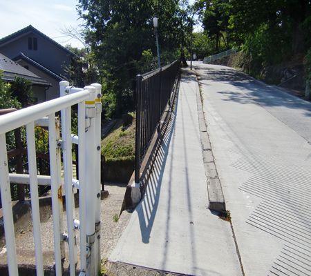 nagano shi hakoshimizu area saki01 20090902 02_R