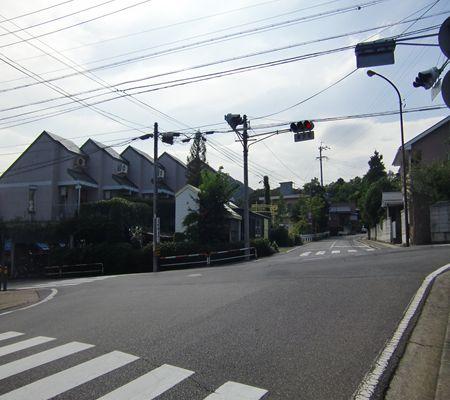 nagano shi yokozawacho kosaten 20090902_R