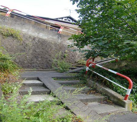nagano shi yokozawacho area saki 02 20090902 03_R