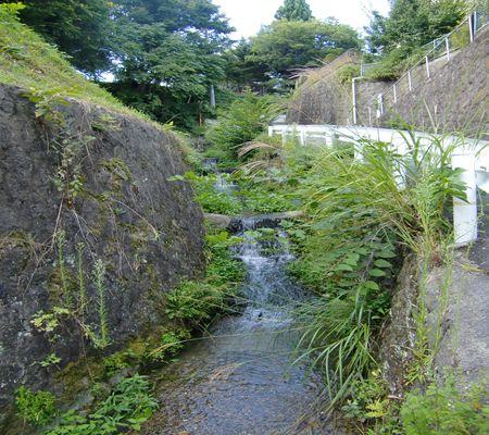 nagano shi yokozawacho area 20090902 04_R