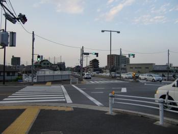 chofu shi tamagawa side kosaten 20100605_R