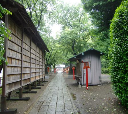 saitama washimiya jinjya 02 20100524_R