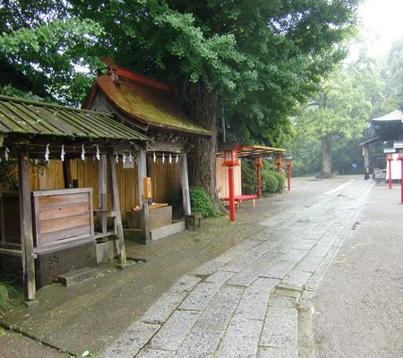 saitama washimiya jinjya 06 20100524_R