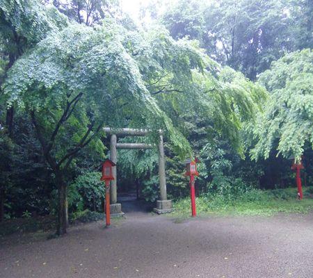 saitama washimiya jinjya 08 20100524_R